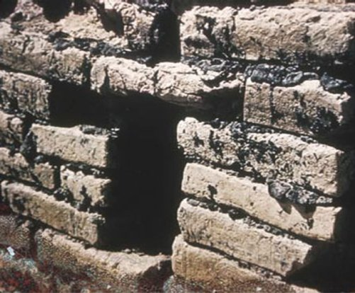 Nabonidus mudbricks and mortar
